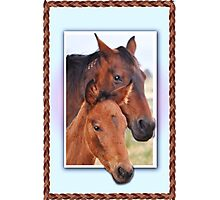 Mare and her Foal  Photographic Print