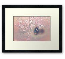Sakura Seep Framed Print