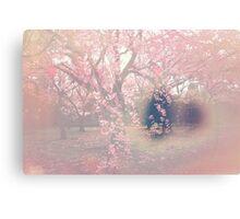Sakura Seep Canvas Print