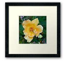 Green Invader - Yellow Flower Framed Print
