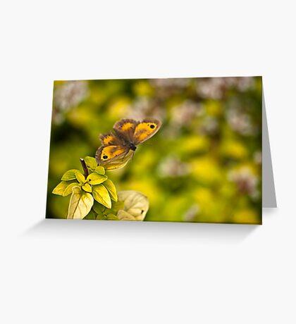 Gatekeeper Butterfly #2 Greeting Card