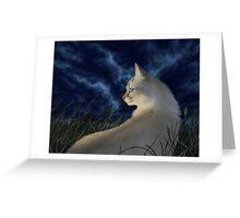 Stormfall Greeting Card