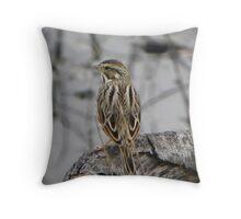 White-throated Sparrow Throw Pillow