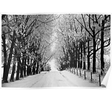 Winter Drive 2010 BW Poster