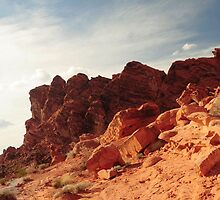 Valley Of Fire Landscape by Kathleen Struckle