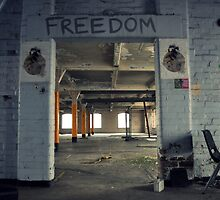 Freedom by Ben Jones