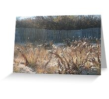 Goldenrod at Narragansett Beach Greeting Card