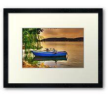 Pelicans Launch... Framed Print
