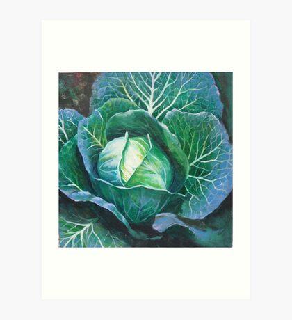 Cabbage.... Art Print