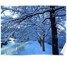 Trees Love Snow Poster