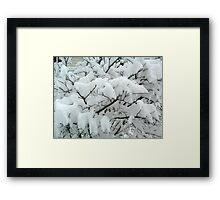 Tiny Branches Covered In Snow Framed Print