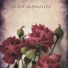 Dried memories by Caterpillar