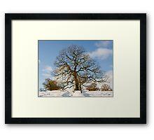 Winter Snow Scene Framed Print