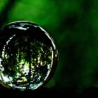 Saved The Green World...Got Explore Featured Work, Win in the challenges... by Kornrawiee