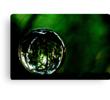Saved The Green World...Got Explore Featured Work, Win in the challenges... Canvas Print