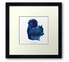 The Squirrel Framed Print