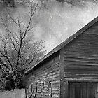 Winter Barn by Josie Duff