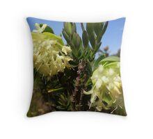 Scented Banjine (Pimelea suaveolens) Throw Pillow