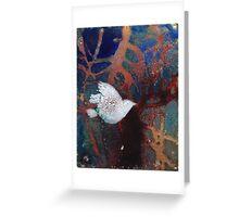 white bird Greeting Card