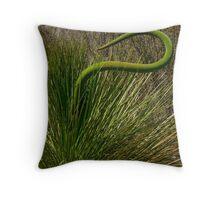 Grass Tree (Xanthorrhoea preissii)  Throw Pillow