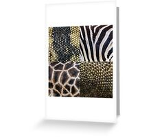 Zoo Textures Greeting Card