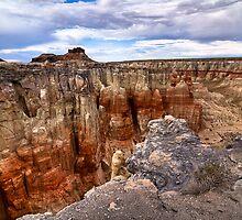 The Coal Mine Canyon, Arizona by MattGranz