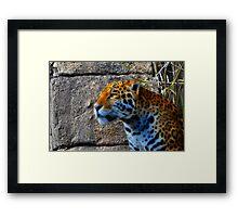 Jaguar meets Fractalius Framed Print