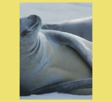 Cool Crabeater Seal Kids Clothes
