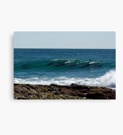 Dolphin Magic Canvas Print