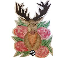 Stag Head & Roses Photographic Print