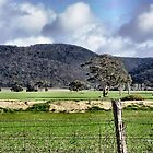 View of Brisbane Ranges at Balliang, Vic by EdsMum
