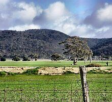View of Brisbane Ranges at Balliang, Vic by EdsMum