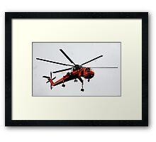 The Flying Gnat Framed Print