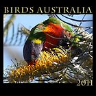 Birds of Australia by Daphne Gonzalvez