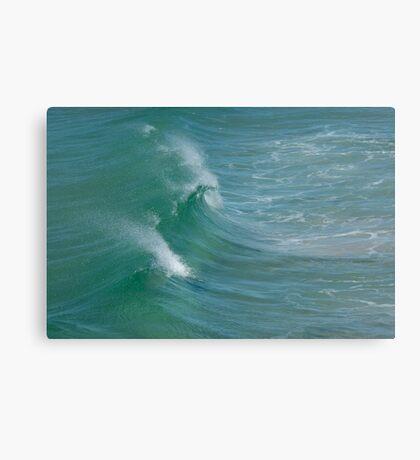 Splash Back Canvas Print
