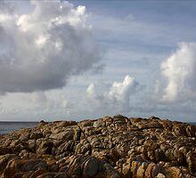 Rock sculpture, Friendly Beaches, Tasmania by pfleur