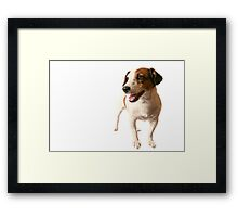 I am Jack... Framed Print