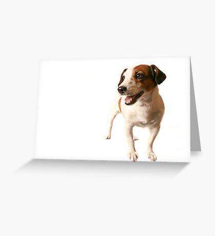 I am Jack... Greeting Card