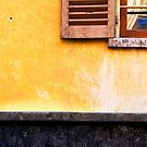 Yellow wall :: Window by Silvia Ganora