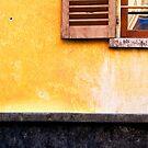 Yellow wall :: Window by Silvia Ganora