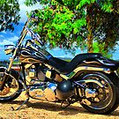 Harley HDR. by Petehamilton