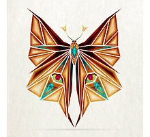 fox or butterfly? Photographic Print