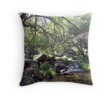 By the stream Throw Pillow