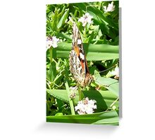 Beauty Greeting Card