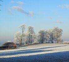 Cotswolds Winter Wonderland 2 by janrique