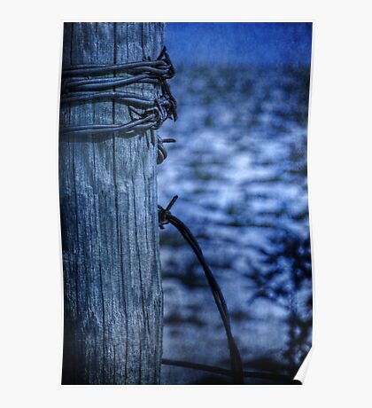 Barbed Wire in Blue Poster