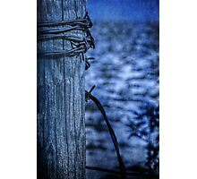 Barbed Wire in Blue Photographic Print