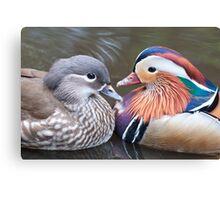 Mr & Mrs Mandarin Canvas Print