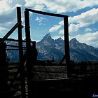 Framed Teton by Loree McComb