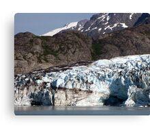 Glacial contrasts Canvas Print